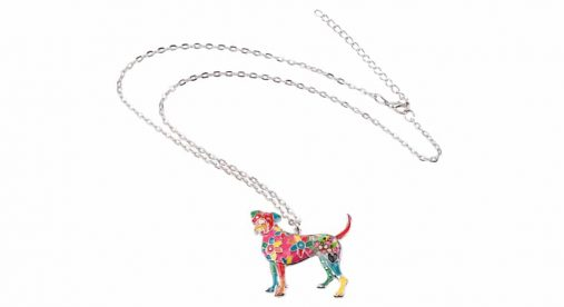 Boxer Colorful Pendant