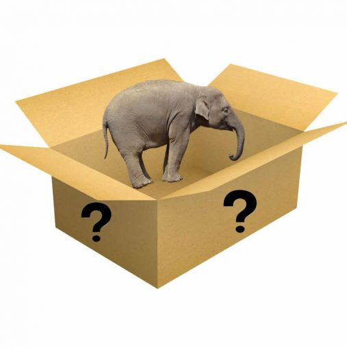 FREE Mystery Elephant Gift – Not sold individually