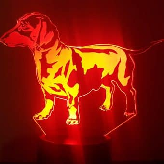 Dachshund 3D Illusion Lamp