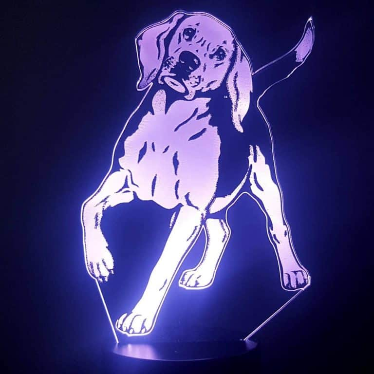 Beagle 3D Illusion Lamp