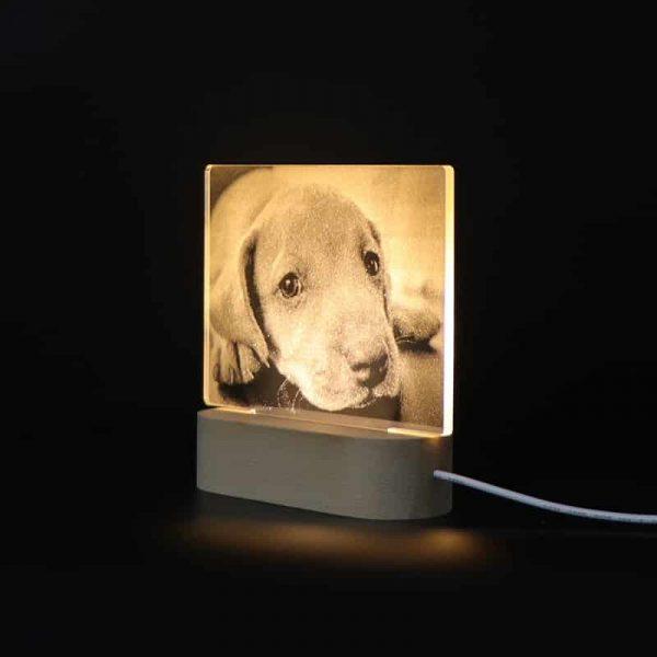 Customized 3D Night Light Desk Lamp